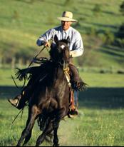 Jim Jordan, Broker/Owner, Jordan Land Management